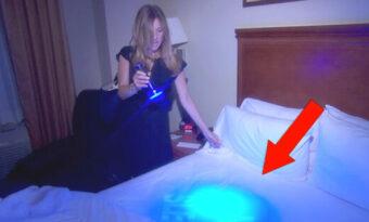 När de lyser under täcket på hotellet hittar de vad de absolut inte fick hitta – Jag kommer aldrig att bo på ett hotell igen